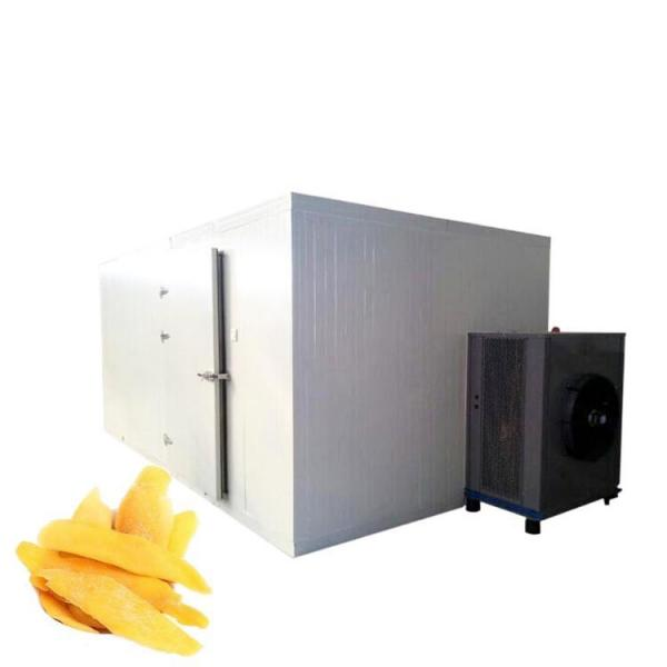 Mushroom Fruit & Vegetables Food Processing Dehydration Drying Mesh Belt Dryer/Dehydrator #1 image