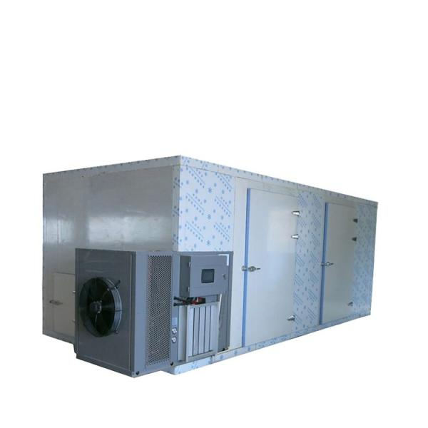 High Efficiency Fish Drying Machine Seafood Dehydrator Equipment #1 image